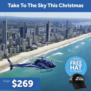 Christmas Package Helicopter Ride