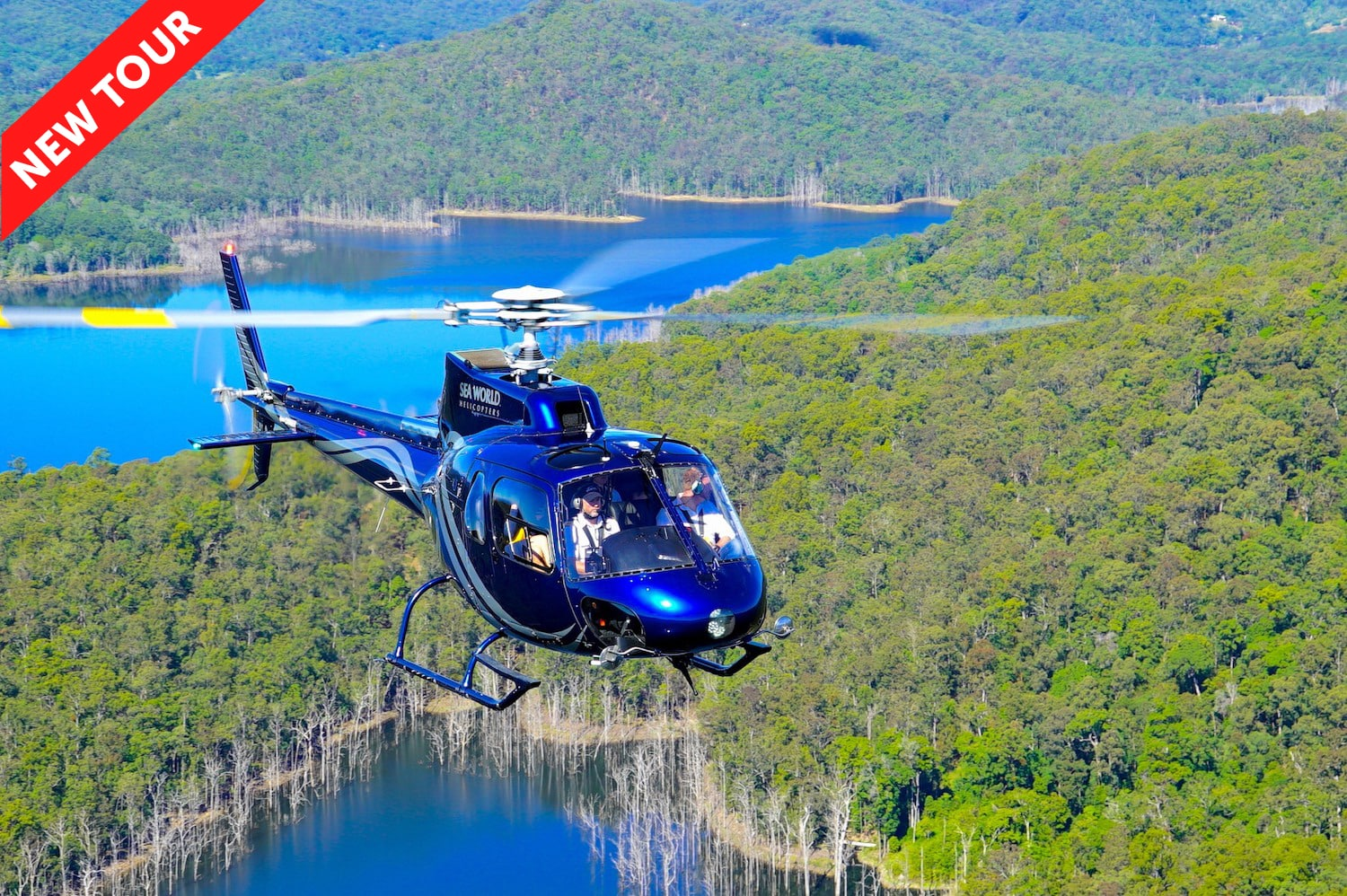 Helicopter-Tour-Gold-Coast-30-Minute-Flight5